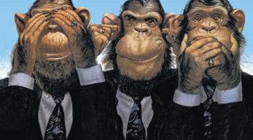 simtul-responsabilitatii-trei-maimute